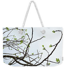 The Fig Tree Budding Weekender Tote Bag by Yoel Koskas
