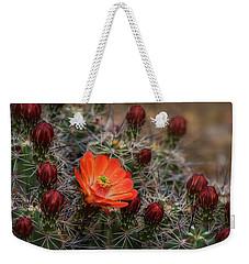 Weekender Tote Bag featuring the photograph The First Bloom  by Saija Lehtonen