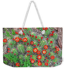 The First Week Of May, Claret Cup Cacti Begin To Bloom Throughout The Colorado Rockies.  Weekender Tote Bag by Bijan Pirnia