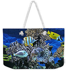 The Fishes Know Everything Weekender Tote Bag