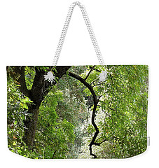 Weekender Tote Bag featuring the photograph The Forest Beckons by Michele Myers
