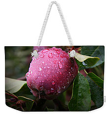 Weekender Tote Bag featuring the photograph The Freshest Apple by Katie Wing Vigil
