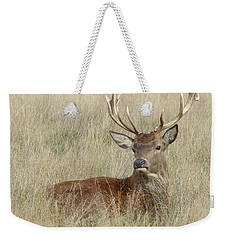 The Gentle Stag Weekender Tote Bag