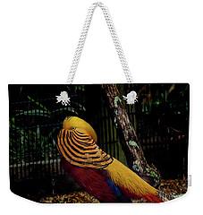 The Golden Pheasant Or Chinese Pheasant -atlanta Ga, Zoo Weekender Tote Bag
