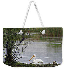 The Goose And The Pelican Weekender Tote Bag by Alyce Taylor