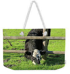 Weekender Tote Bag featuring the photograph The Grass Is Always Greener by Art Block Collections