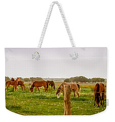 Weekender Tote Bag featuring the photograph The Grass Was Greener by Melinda Ledsome