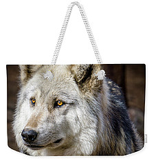 Weekender Tote Bag featuring the photograph The Gray Wolf by Teri Virbickis