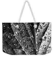Weekender Tote Bag featuring the photograph The Grey Area by Jessica Manelis