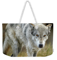 The Grey Wolf Shake Weekender Tote Bag