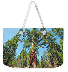 Weekender Tote Bag featuring the photograph The Grizzly Giant- by JD Mims