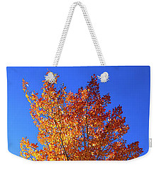 Weekender Tote Bag featuring the photograph The Hillside - Panorama by Shane Bechler