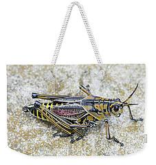 The Hopper Grasshopper Art Weekender Tote Bag by Reid Callaway