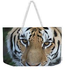 Weekender Tote Bag featuring the photograph The Hunter by Laddie Halupa