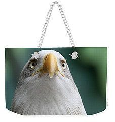 Weekender Tote Bag featuring the photograph The Hunters Stare by Laddie Halupa
