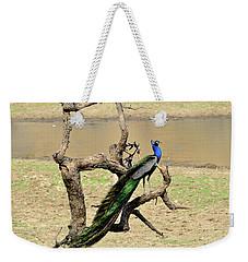 The Indian Peafowl Weekender Tote Bag