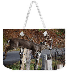 Weekender Tote Bag featuring the photograph The Jumper 2 by Douglas Stucky