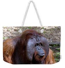 The Jungle V.i.p. Weekender Tote Bag
