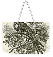 The Kite Weekender Tote Bag by English School