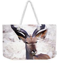 The Kudu Portrait 2 Weekender Tote Bag by Ernie Echols