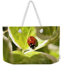 The Ladybug  Weekender Tote Bag