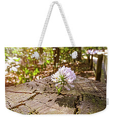The Last Of Summer Weekender Tote Bag by Melissa Messick
