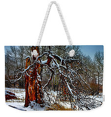 Weekender Tote Bag featuring the photograph The Last Stand by Shane Bechler