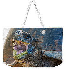 The Laughing Tortoise Weekender Tote Bag by Kenneth Albin