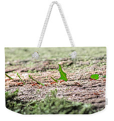 The Leaf Parade  Weekender Tote Bag by Betsy Knapp