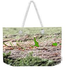 The Leaf Parade  Weekender Tote Bag