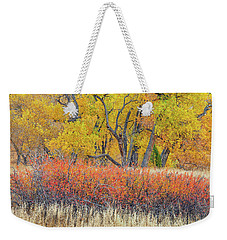 The Leaves That Will Become The Essential Component Of Soil Called Humus  Weekender Tote Bag