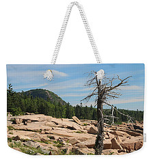 Weekender Tote Bag featuring the photograph The Lone Tree by Living Color Photography Lorraine Lynch