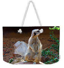 The Lookout - Meerkat Weekender Tote Bag
