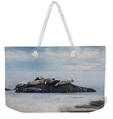 Weekender Tote Bag featuring the photograph The Lounge In by Robin-Lee Vieira