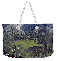 The Meadow From Four Mile Trail Weekender Tote Bag