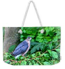 The Merlin Falcon Weekender Tote Bag