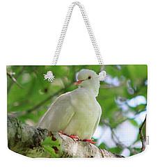 the Messenger Weekender Tote Bag by Ella Kaye Dickey