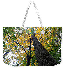The Mighty Tulip Popular State Tree Of Indiana Weekender Tote Bag