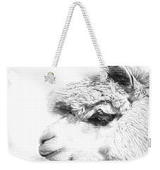 Weekender Tote Bag featuring the photograph The Misty by Robin-Lee Vieira