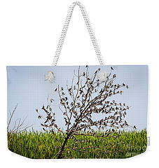 Weekender Tote Bag featuring the photograph The More The Merrier- Tree Swallows  by Ricky L Jones