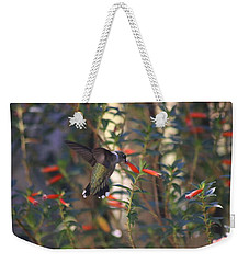 Weekender Tote Bag featuring the photograph The Morning Whisper by Living Color Photography Lorraine Lynch