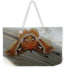 The Moth Weekender Tote Bag by Nick Kirby