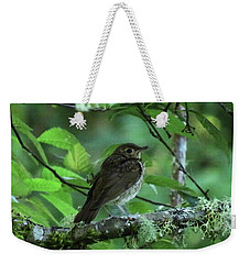 ..the Mysterious Thrush.. Weekender Tote Bag