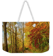 Weekender Tote Bag featuring the photograph The Path In Fall by Mark Dodd