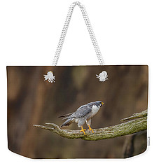 The Peregrine Falcon Weekender Tote Bag