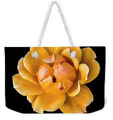 The Perfect Rose Weekender Tote Bag by Venetia Featherstone-Witty