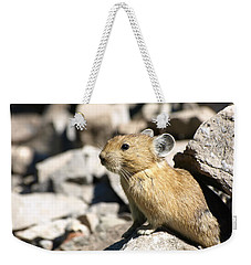 The Pika Weekender Tote Bag