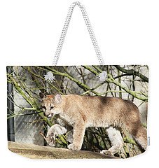 Weekender Tote Bag featuring the photograph The Red Carpet by Laddie Halupa