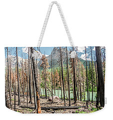 Weekender Tote Bag featuring the photograph The Revealed View by Margaret Pitcher