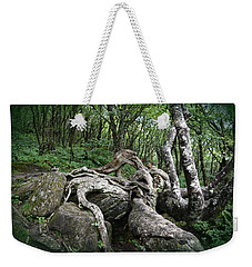 The Root Weekender Tote Bag by Gary Smith